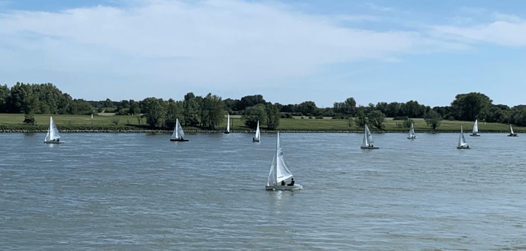 Der ABC Mit 4 Booten Bei Der Rheinwoche